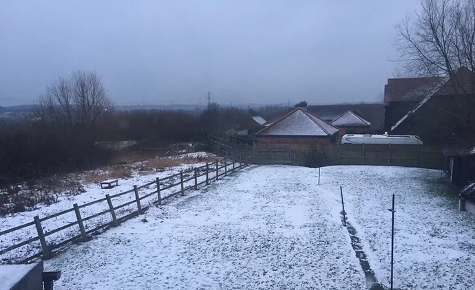 snow%201-2-19